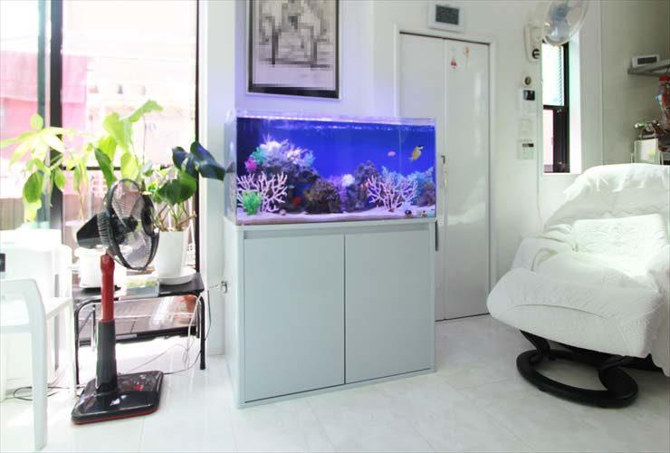 新宿区 個人宅のリビングに設置 海水アクアリウム 90cm水槽事例
