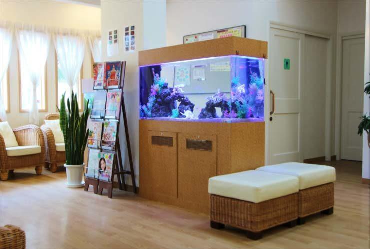 脳神経クリニック 待合室に設置 海水魚水槽レイアウト リニューアル事例 水槽写真