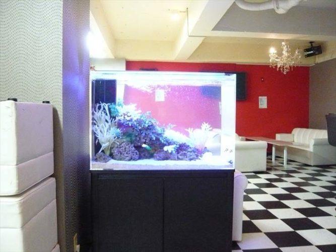 東京都中野区 飲食店様  90cm海水魚水槽  設置事例 メイン画像