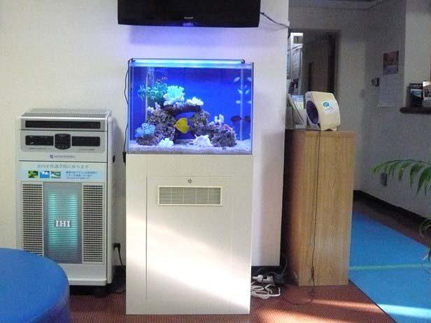 東京都羽村市 病院様  60cm海水魚水槽  設置事例 メイン画像