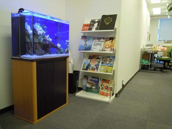 東京都渋谷区 エーシンクオンゼロ様  60cm海水魚水槽  設置事例 メイン画像