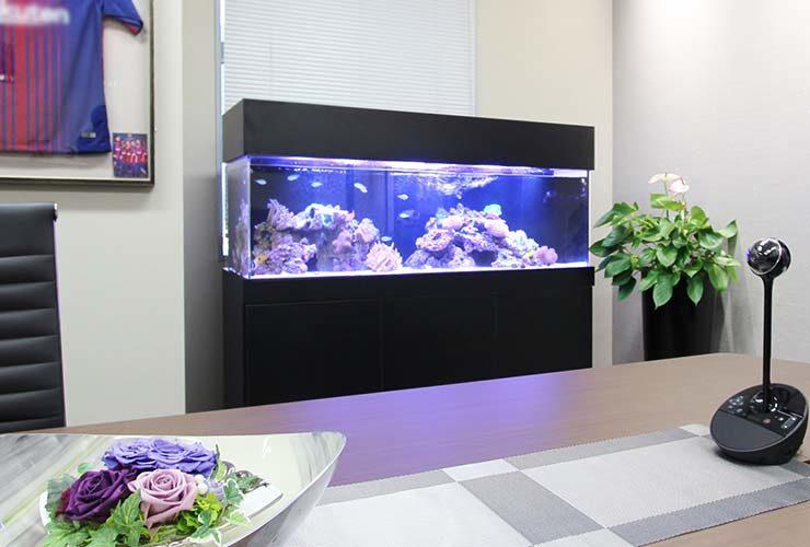 フォーサイドフィナンシャルサービス株式会社様 150cm海水サンゴ水槽 設置事例 メイン画像