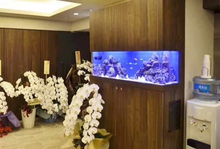 横浜 美容クリニック 待合室 120cm海水魚水槽 設置事例 メイン画像