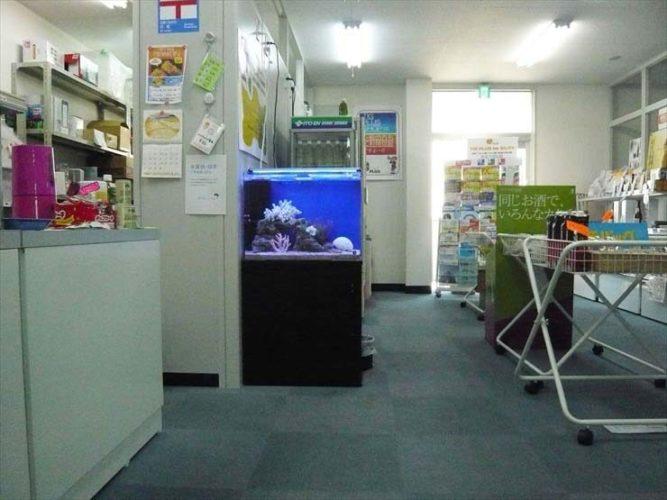 東京都板橋区 企業様  60cm海水魚水槽  設置事例 メイン画像