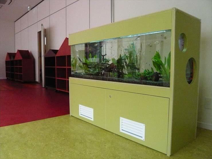 東京都世田谷区 保育園様  150cm淡水魚水槽  設置事例 水槽画像2