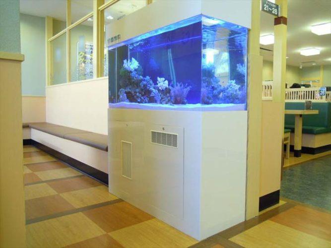 神奈川県海老名市 飲食店様  120cm海水魚水槽  設置事例 メイン画像