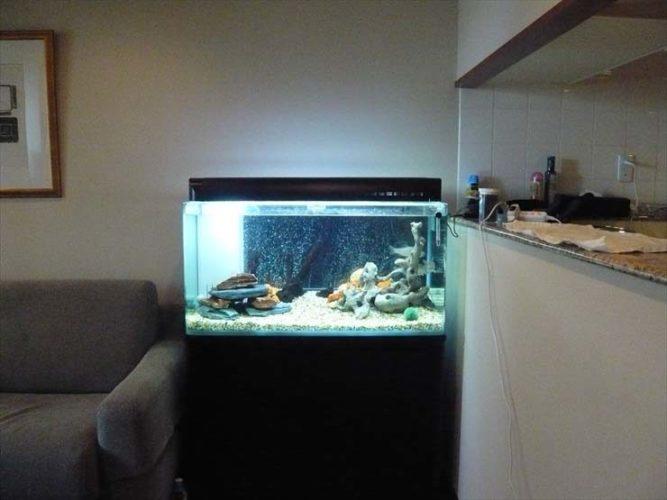都内 個人宅様  90cm淡水魚水槽  設置事例 メイン画像