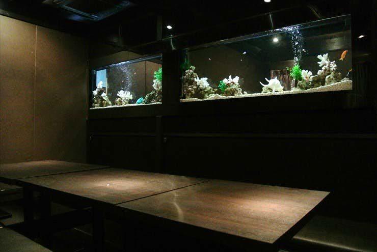 東京都豊島区 飲食店様 水槽メンテナンス事例 メイン画像