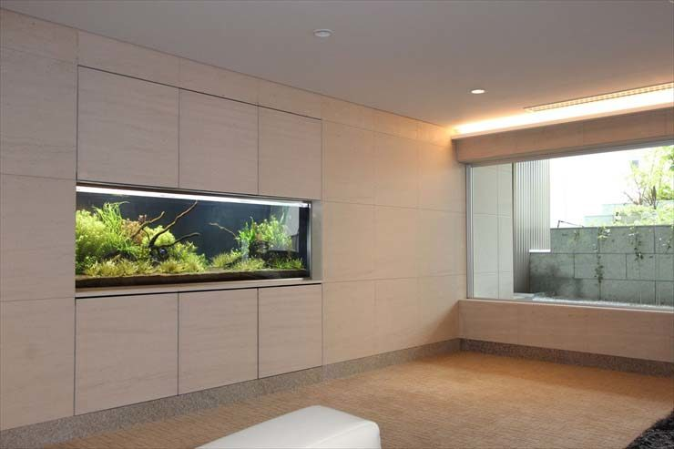 東京都品川区 マンション様  180cm淡水魚水槽  設置事例 メイン画像
