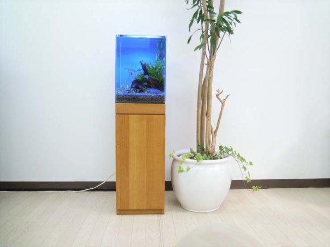 東京都 オフィス様  30cm淡水魚水槽  設置事例 メイン画像