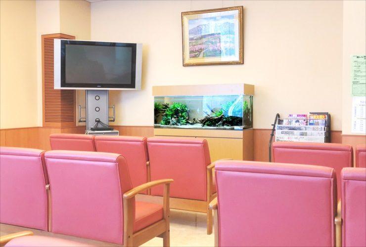 愛知県 病院の待合室 透明感のある120cm淡水魚水槽 設置事例 水槽画像2