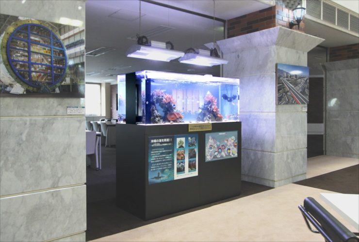 横浜市 オフィスのエントランス 150cm海水・サンゴ水槽