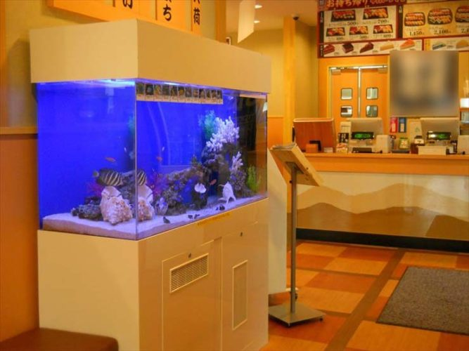 東京都足立区 飲食店様  120cm海水魚水槽  設置事例 メイン画像