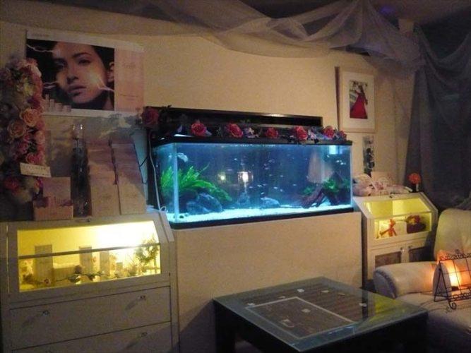 東京都立川市 サロン様  120cm淡水魚水槽  設置事例 メイン画像