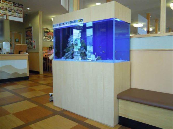 神奈川県平塚市 飲食店様  120cm海水魚水槽  設置事例 メイン画像