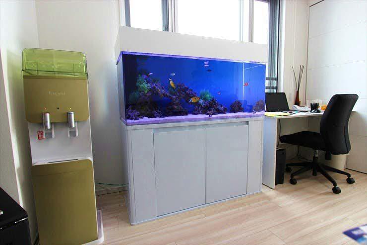 東京都中央区 企業様  120cm海水魚水槽  設置事例 メイン画像