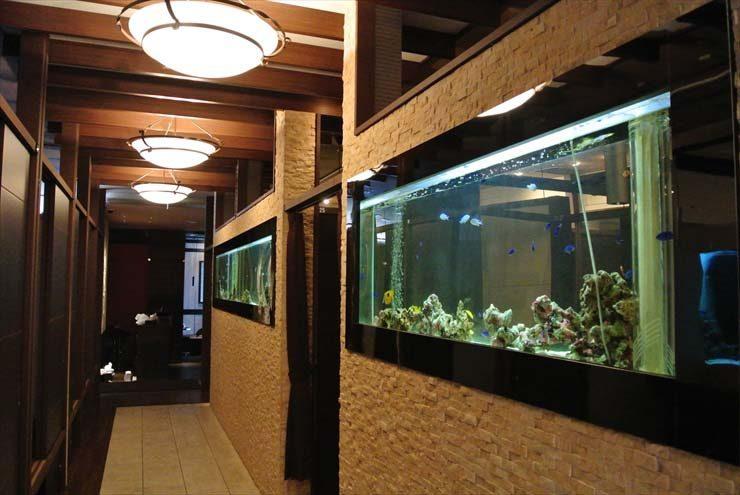 大阪府中央区 飲食店様  水槽設置事例 メイン画像