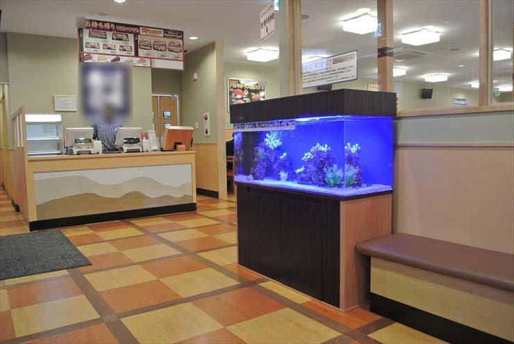 埼玉県草加市 飲食店様  120cm海水魚水槽  設置事例 メイン画像