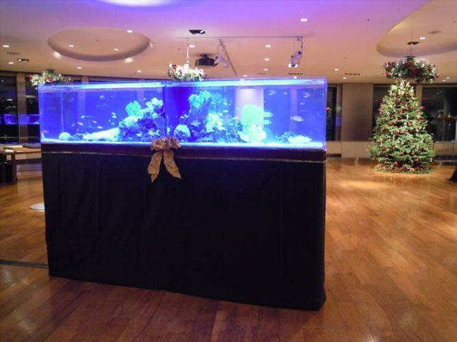 六本木クラブ様 クリスマスイベント  水槽設置事例 メイン画像