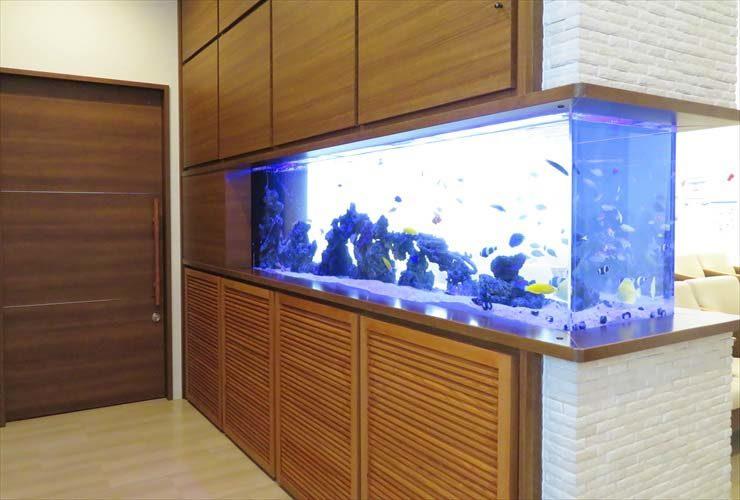 整形外科 待合室 大型海水魚水槽 レイアウトリニューアル事例 水槽画像1