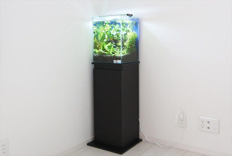 横浜 個人宅 水草アクアリウム お試し水槽の設置事例 水槽画像2