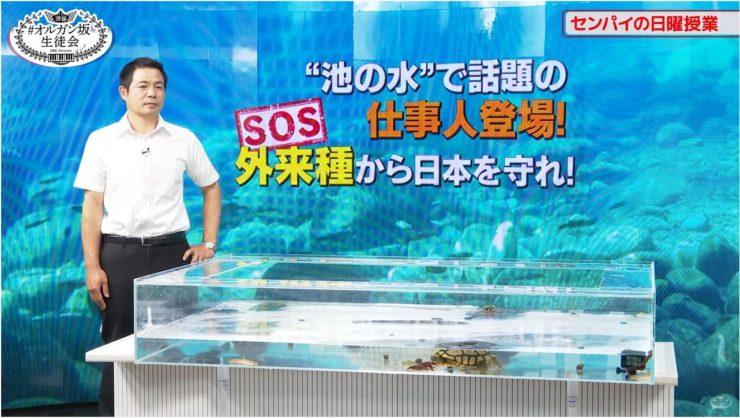 動画配信 撮影スタジオ タッチプール 短期レンタル事例 水槽画像4