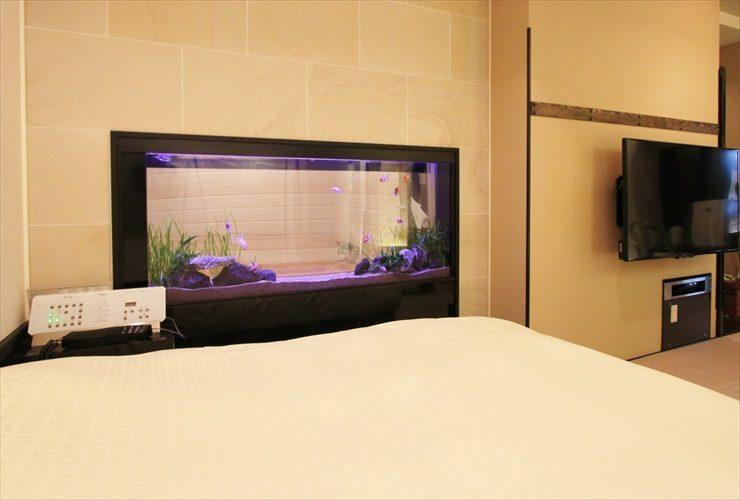 はめ込み型アクアリウム 金魚水槽 リニューアル写真2