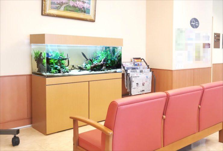 病院クリニックの水槽レンタル