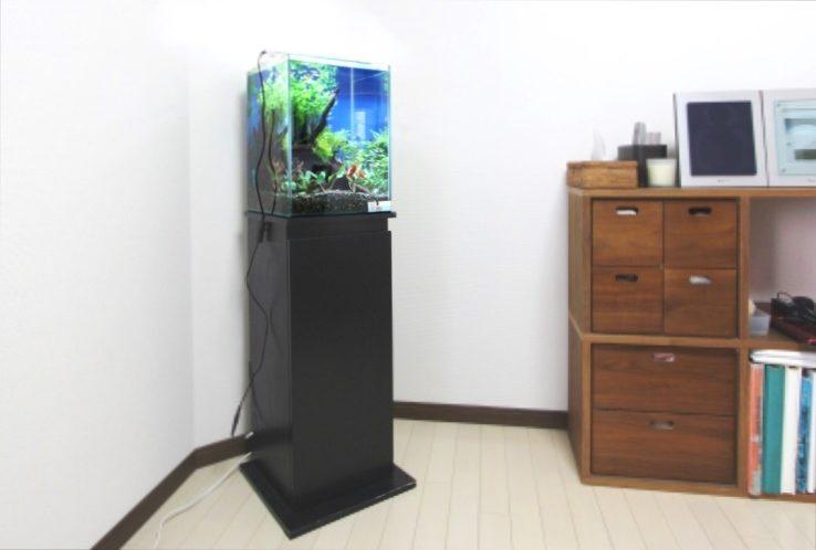 個人宅のリビング アクアガーデンお試し水槽 設置事例 メイン画像