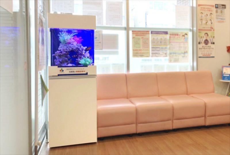 クリニックの待合室 45cm海水魚水槽 設置事例 水槽画像1
