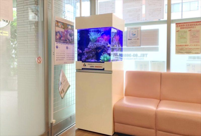 クリニックの待合室 45cm海水魚水槽 設置事例 水槽画像2