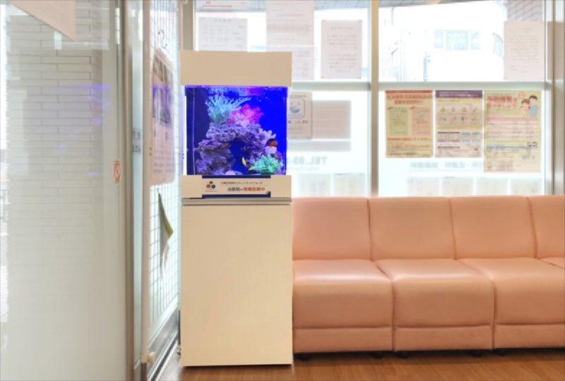クリニックの待合室 45cm海水魚水槽 設置事例 水槽画像4