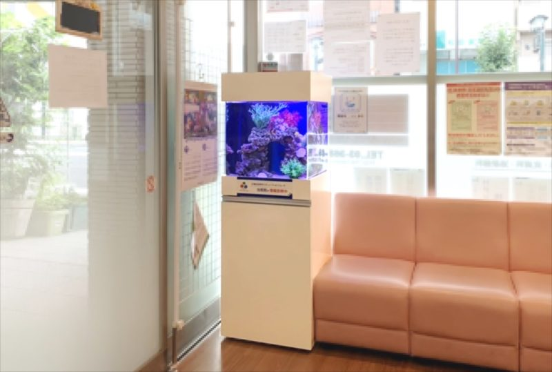 クリニックの待合室 45cm海水魚水槽 設置事例 水槽画像5