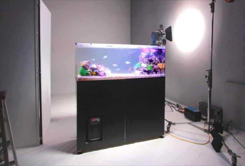 雑誌撮影 短期レンタル 150cm海水魚水槽 設置事例 水槽画像1
