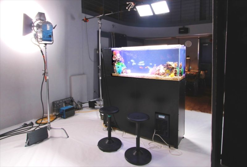雑誌撮影 150cm海水魚水槽 短期レンタル事例 水槽画像2