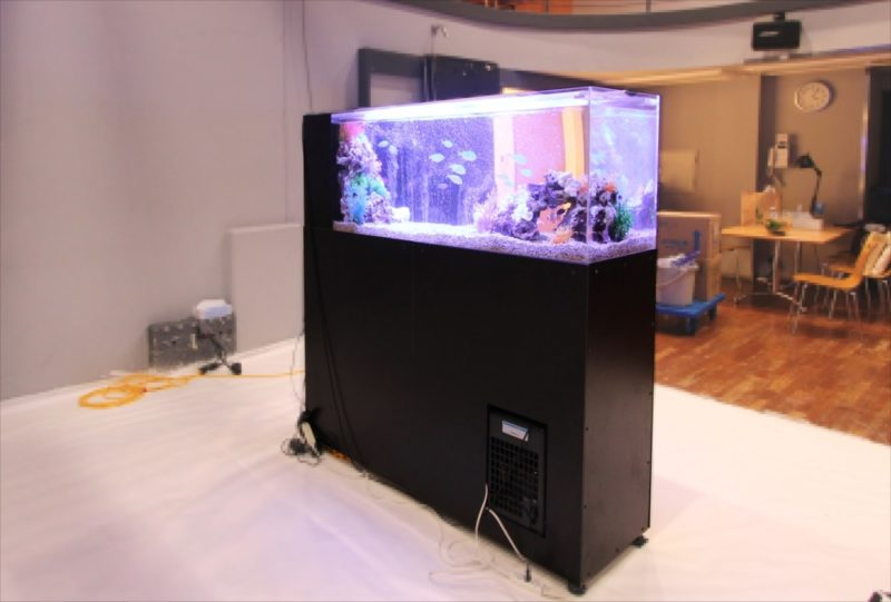 雑誌撮影 150cm海水魚水槽 短期レンタル事例 水槽画像5