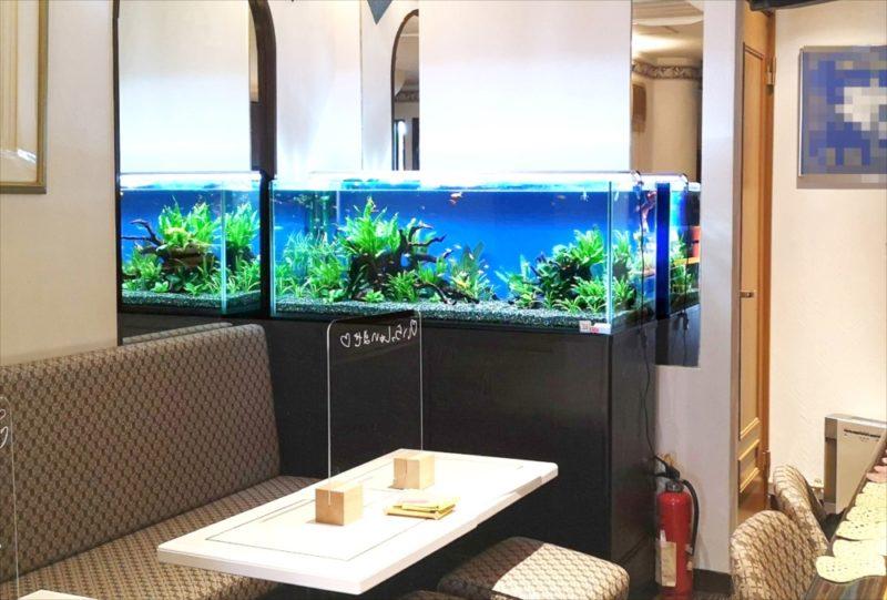 飲食店 120cm淡水魚水槽 設置事例 吉祥寺 水槽画像1