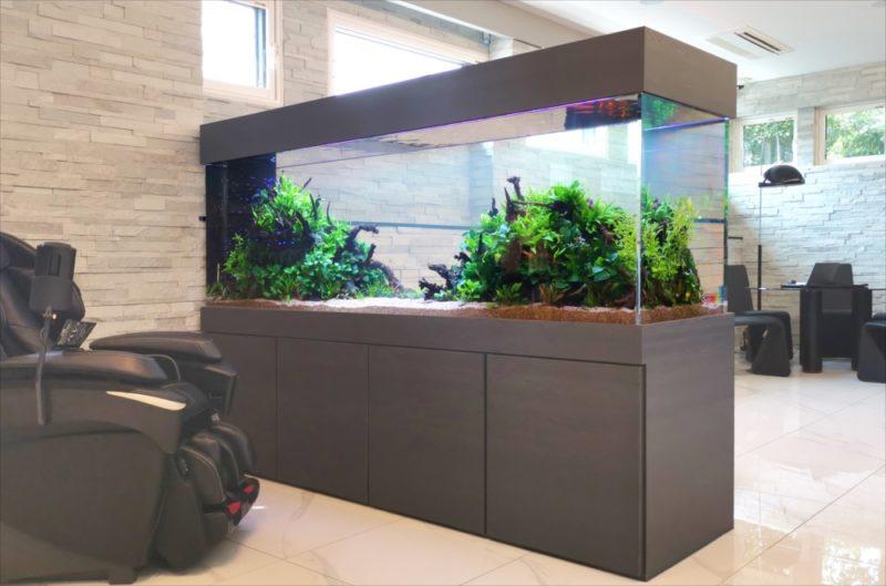 お洒落なインテリア水槽!自宅兼事務所に設置 水槽画像2