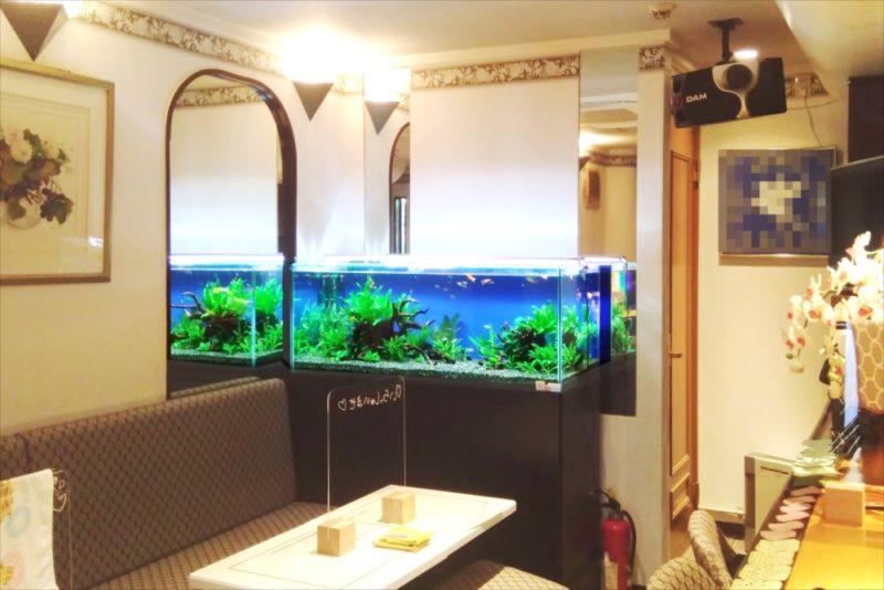 飲食店 120cm淡水魚水槽 設置事例 吉祥寺 水槽画像3