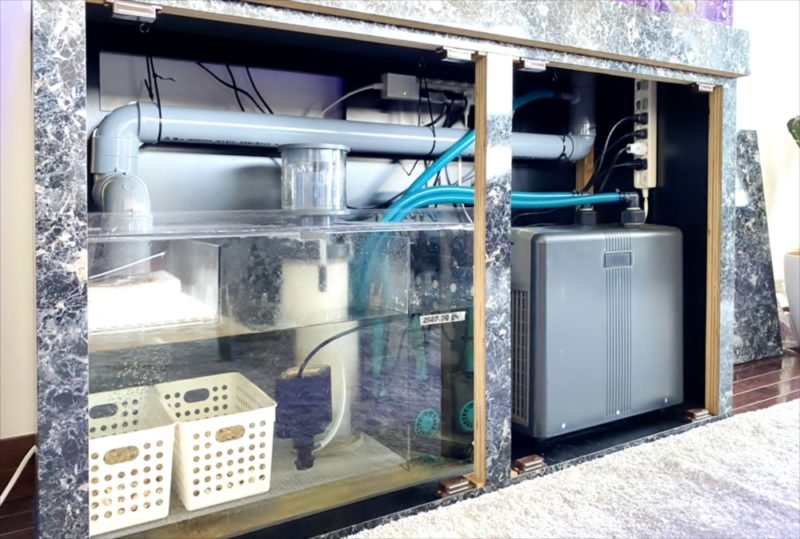 幻想的なサンゴ水槽 オフィス事務所に設置 港区 水槽画像4