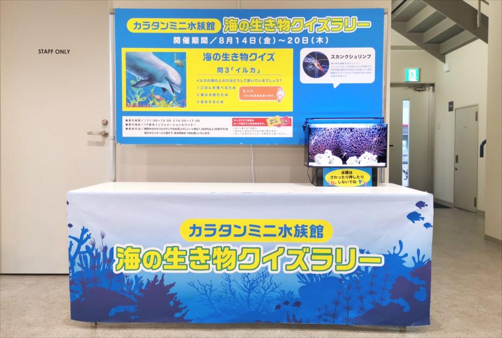 ショッピングセンター 短期イベント 展示水槽設置 メイン画像