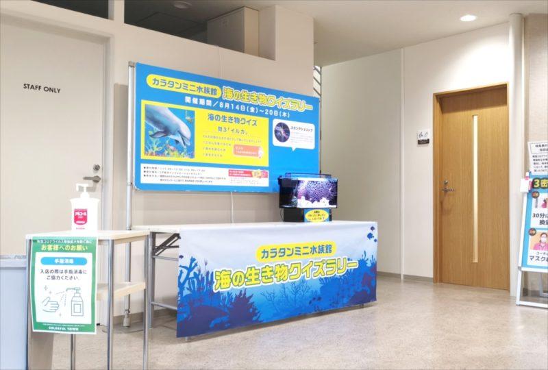 ショッピングセンター 短期イベント 展示水槽 短期レンタル事例 水槽画像2