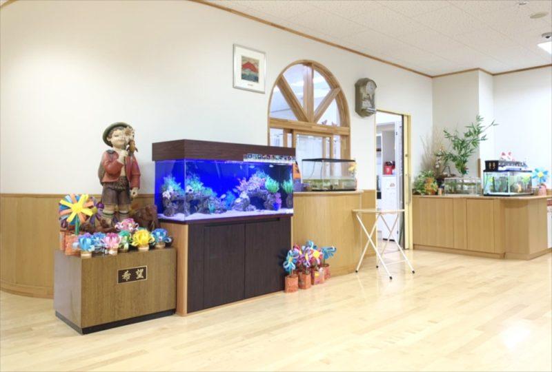 幼稚園のエントランス 120cm海水魚水槽 リース事例 水槽画像5