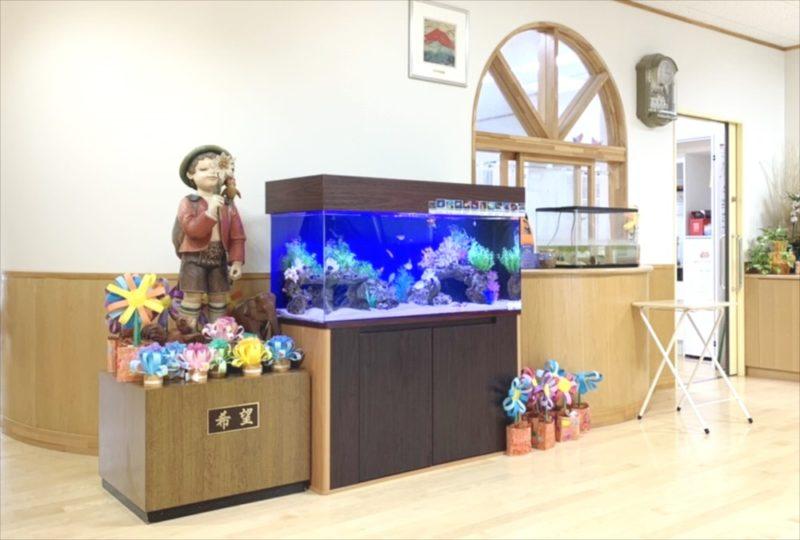 幼稚園のエントランス 120cm海水魚水槽 リース事例 水槽画像1