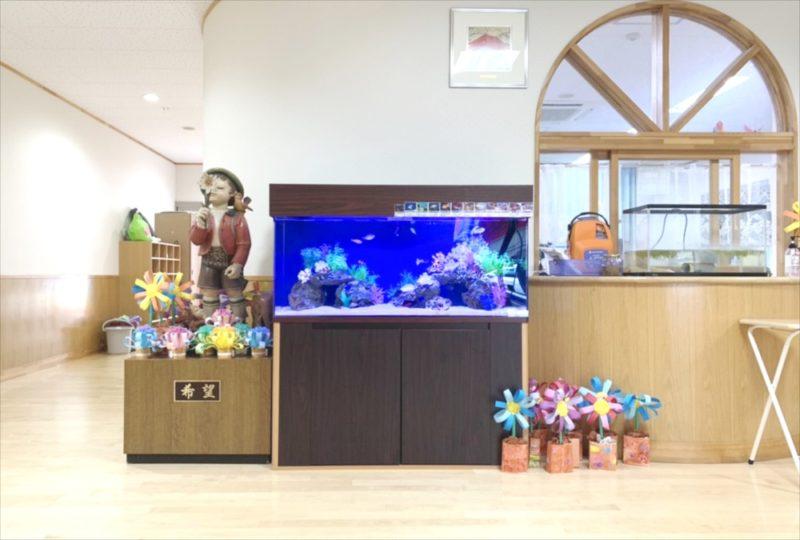 幼稚園のエントランス 120cm海水魚水槽 リース事例 水槽画像2