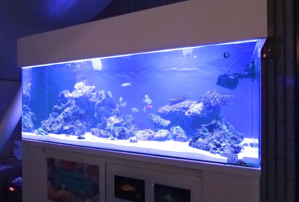 インターナショナル 120cmサンゴ水槽 斜めアップ画像
