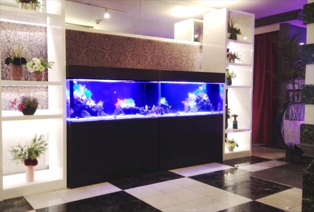 ホテルのエントランス 120cm海水魚水槽 レンタル事例 その後 メイン画像