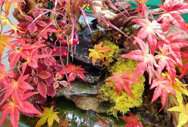 秋の紅葉レイアウト!120cmアクアテラリウム水槽レンタル 水槽画像5