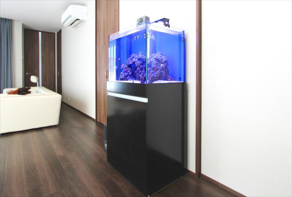 個人宅 60cm海水魚水槽 左斜めアップ画像