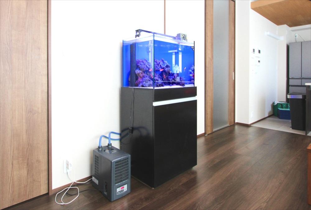 個人宅 60cm海水魚水槽 設置事例 世田谷区